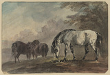 Three horses in a landscape