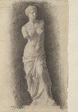 Study after the Venus of Milo