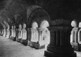 Fontenay Abbey;Cloister