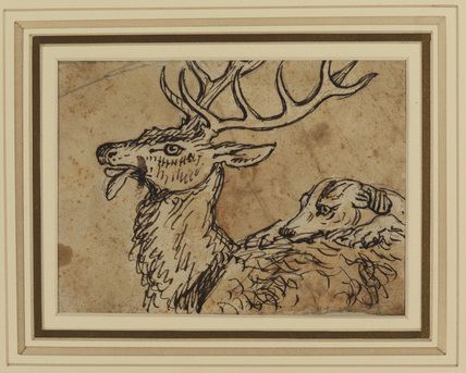 Stag attacked by a hound