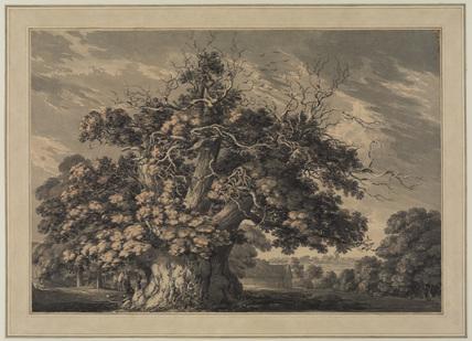 The Chestnut Tree at Little Wymondley, Hertfordshire