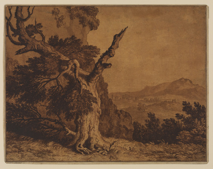 A blasted tree in a landscape