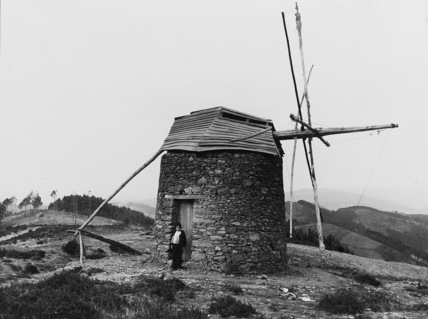 Wellington's Windmill