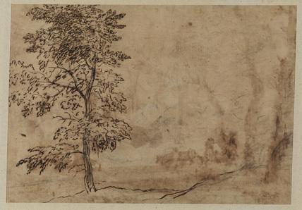 Study of a tree (verso)