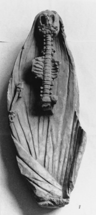 Fragment of a monument