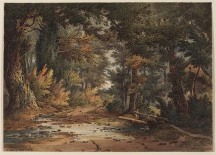 Landscape - a lane near Shrewsbury