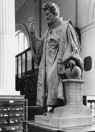 Statue of Georges Frederic Cuvier