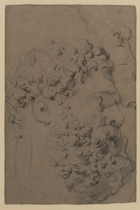 Head of the Farnese Hercules (verso)