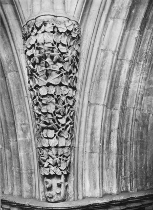 Exeter Cathedral;Cathedral Church
