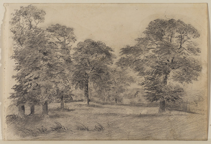 Landscape with a meadow and trees