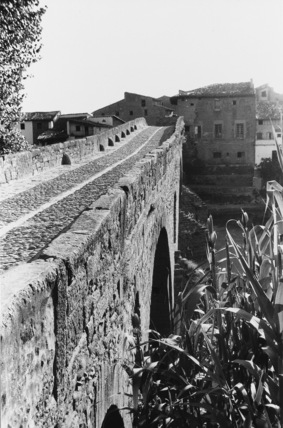 The Medieval Bridge