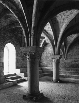Abbaye du Thoronet;Chapter house