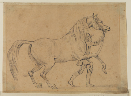 Horse led by a man