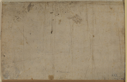 Small sketch of foliage (verso)