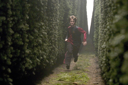 Harry running through the maze