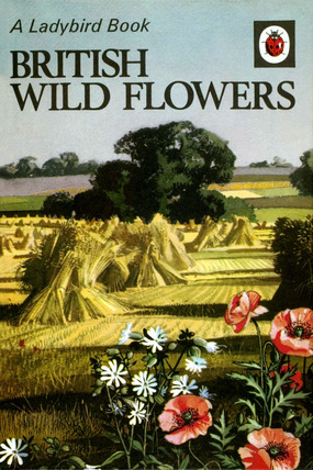 British Wild Flowers cover