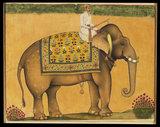 Elephant and rider, c. 1640
