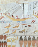 Copy of wall painting from a private tomb of Kaemankh (III, 295)