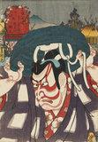 Between Minakuchi and Ishibe: Umenoki-mura, Umeo