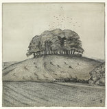 The Wood on the Hill (Wittenham Clumps); verso: landscape, 1912