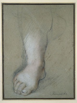Study of a Foot