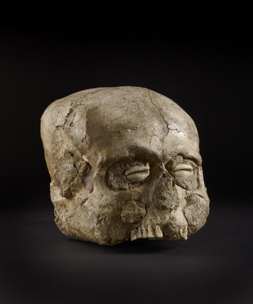Skull with restored features