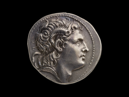 Head of Alexander / Athena