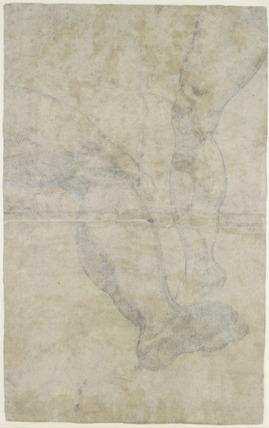 Studies of two pairs of legs