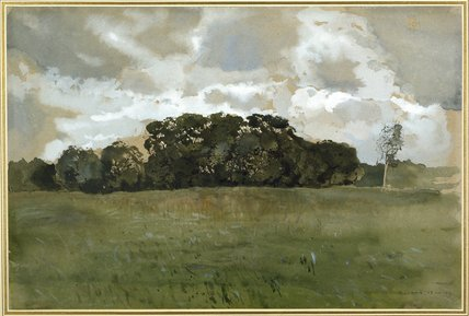 Landscape with grey Clouds