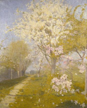 Apple Blossom at Dennemont