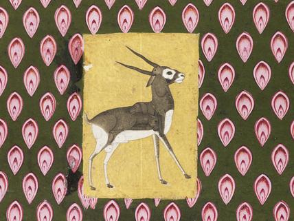 Grylle of a deer-like animal