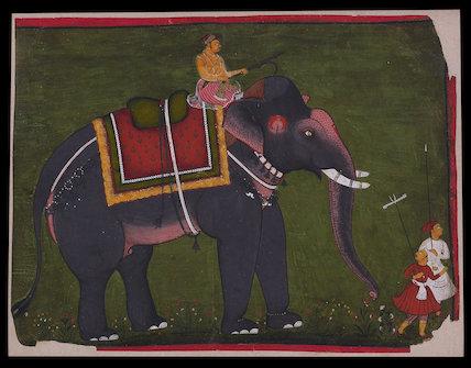 Maharao Bhao Singh riding an  elephant