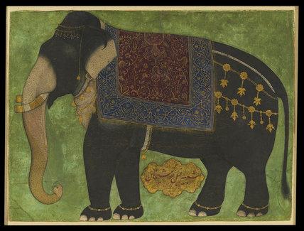 The elephant Khushi Khan