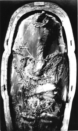Tutankhamun's mummy covered by a linen shroud and floral collars