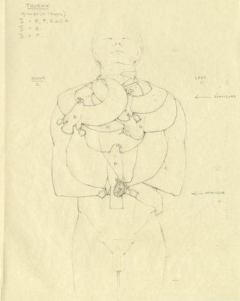 Collars and scarab necklace on Tutankhamun's mummy