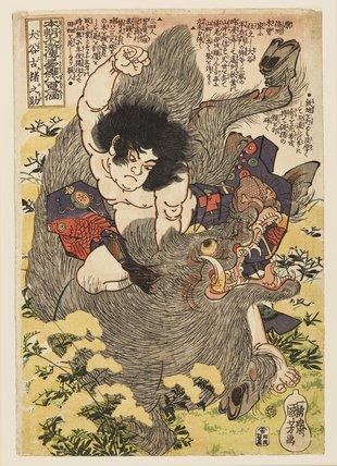 Otani Koinosuke killing a wild boar with his hands.