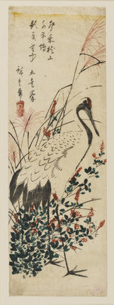 Crane among sprays of red-flowering shrub (bush clover) & grass with pint feathery tufts