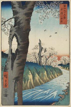 Musashi Koganei