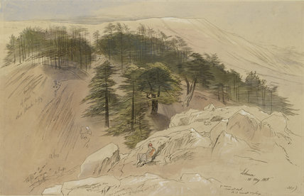 Cedars, Lebanon, 1858 - 1858