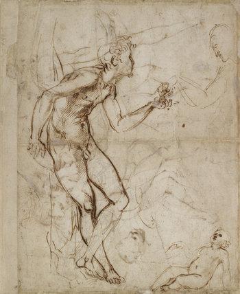 Verso: Adam tempted