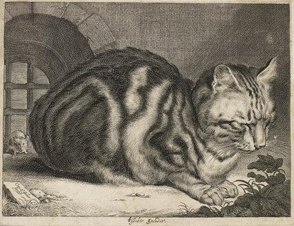 The Large Cat, c. 1657