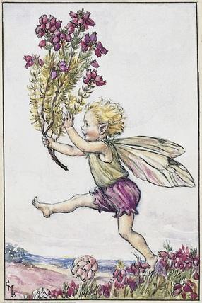 """Résultat de recherche d'images pour """"heather fairy"""""""