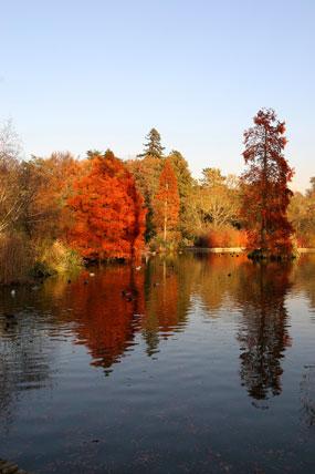 Seven Acres Lake