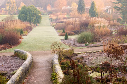 Winter frost at Harlow Carr