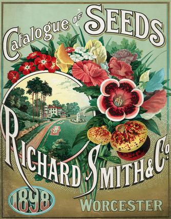 Catalogue of Seeds