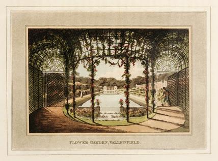 Flower garden, Valley-Field
