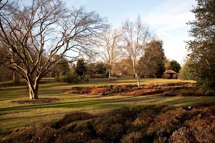 Howard's Field in winter