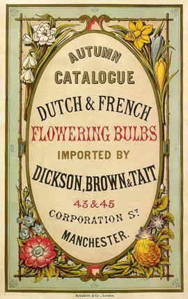 Autumn Catalogue